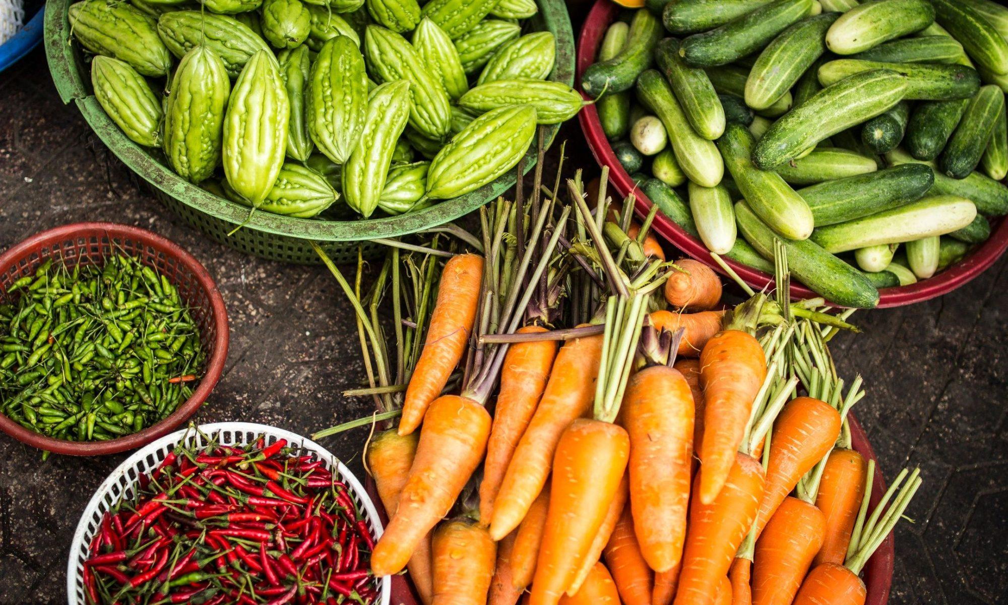 Blog – Food Industry Employment Program
